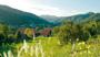 Pauschale: Schwarzwald-Elsass